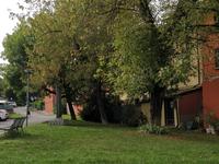 Appuntamento in piazza Lombardi