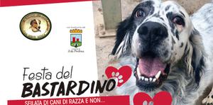 Festa del Bastardino il 15 settembre: sfilata di cani di razza e non...
