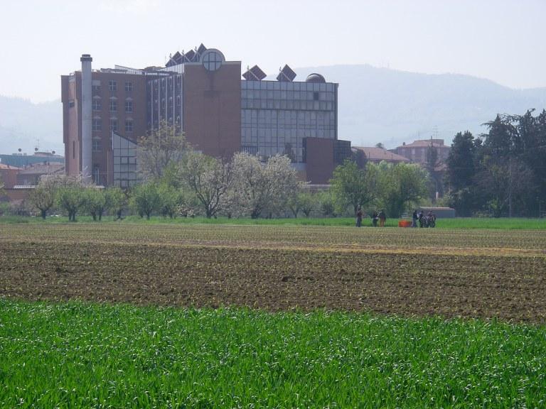 Giardino campagna