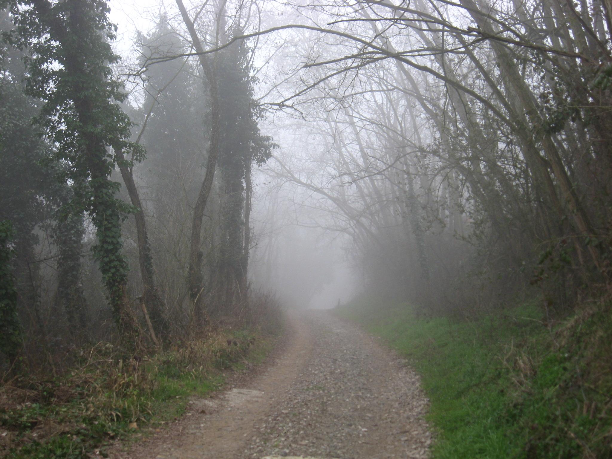 Sentiero dei Gessaroli
