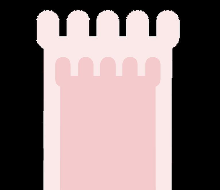 torri logo